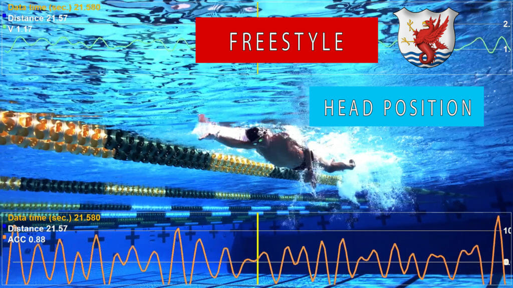 Freestyle Head Position