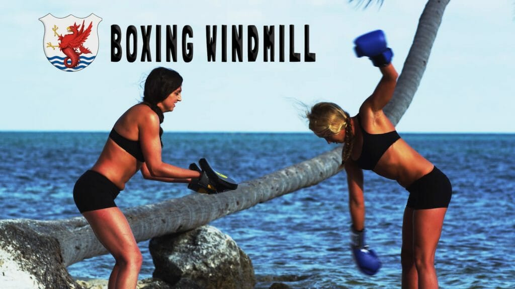 Dryland | Boxing Windmill