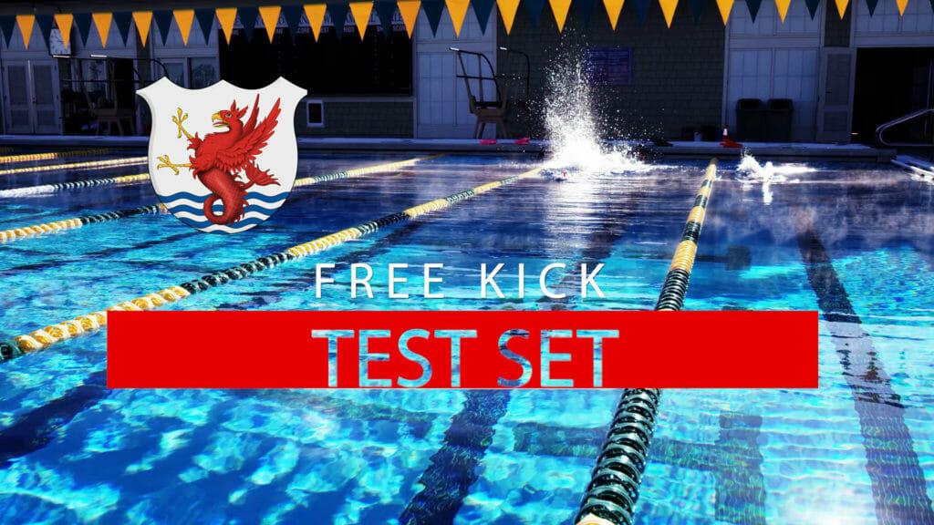 freestyle kick