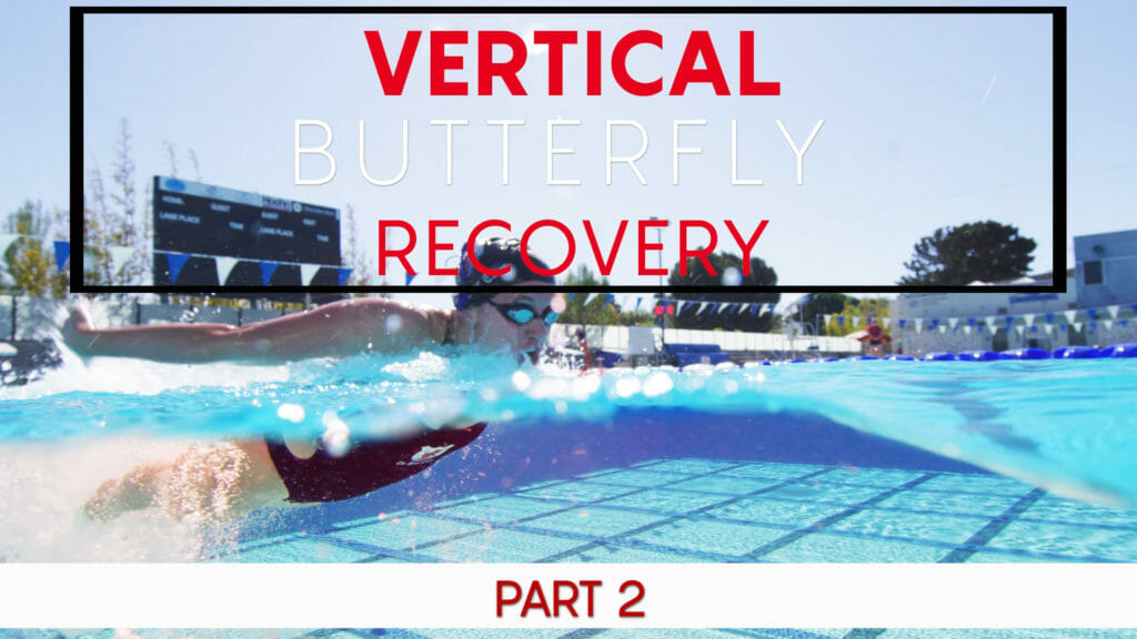 butterfly recovery