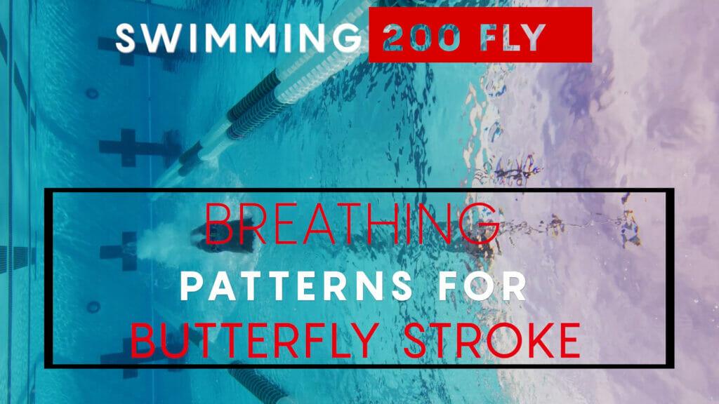 200 Butterfly