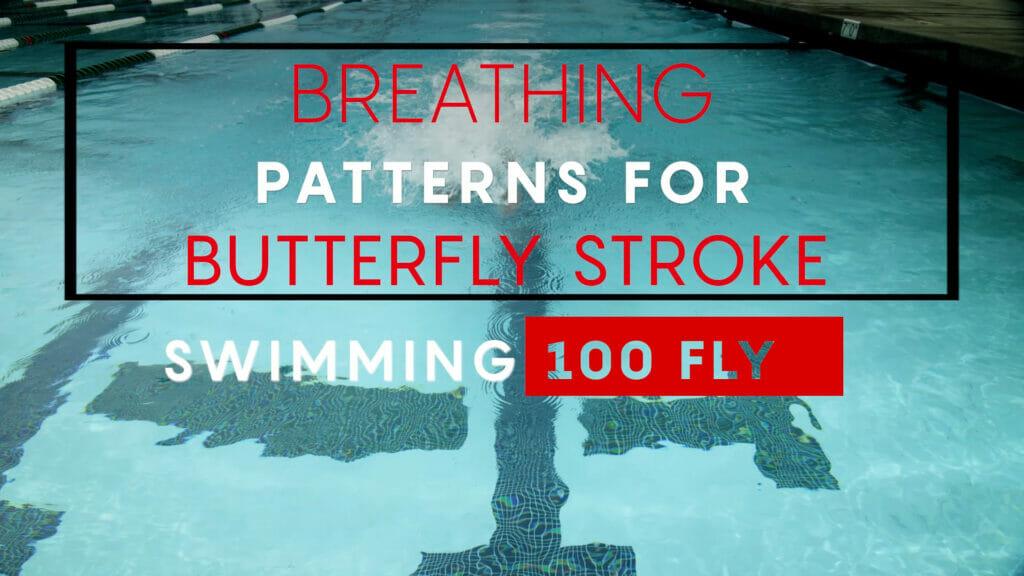 100 butterfly