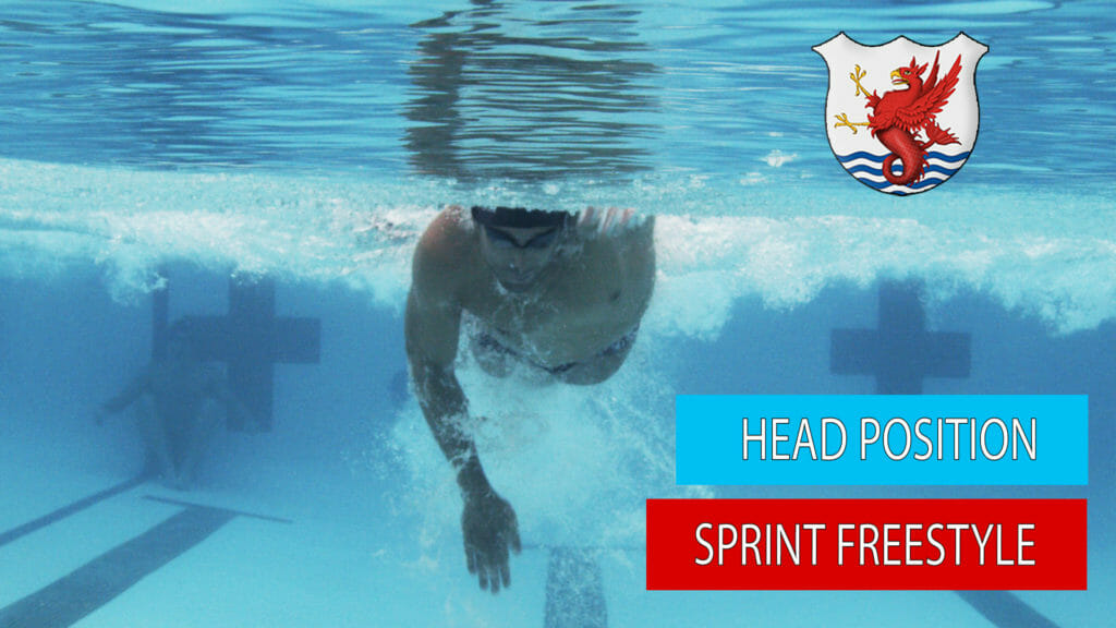 sprint freestyle